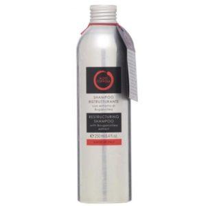 aldo-coppola-shampoo-ristrutturante-con-estratto-di-buganvillea-250ml